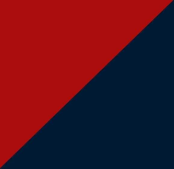 rouge-marine