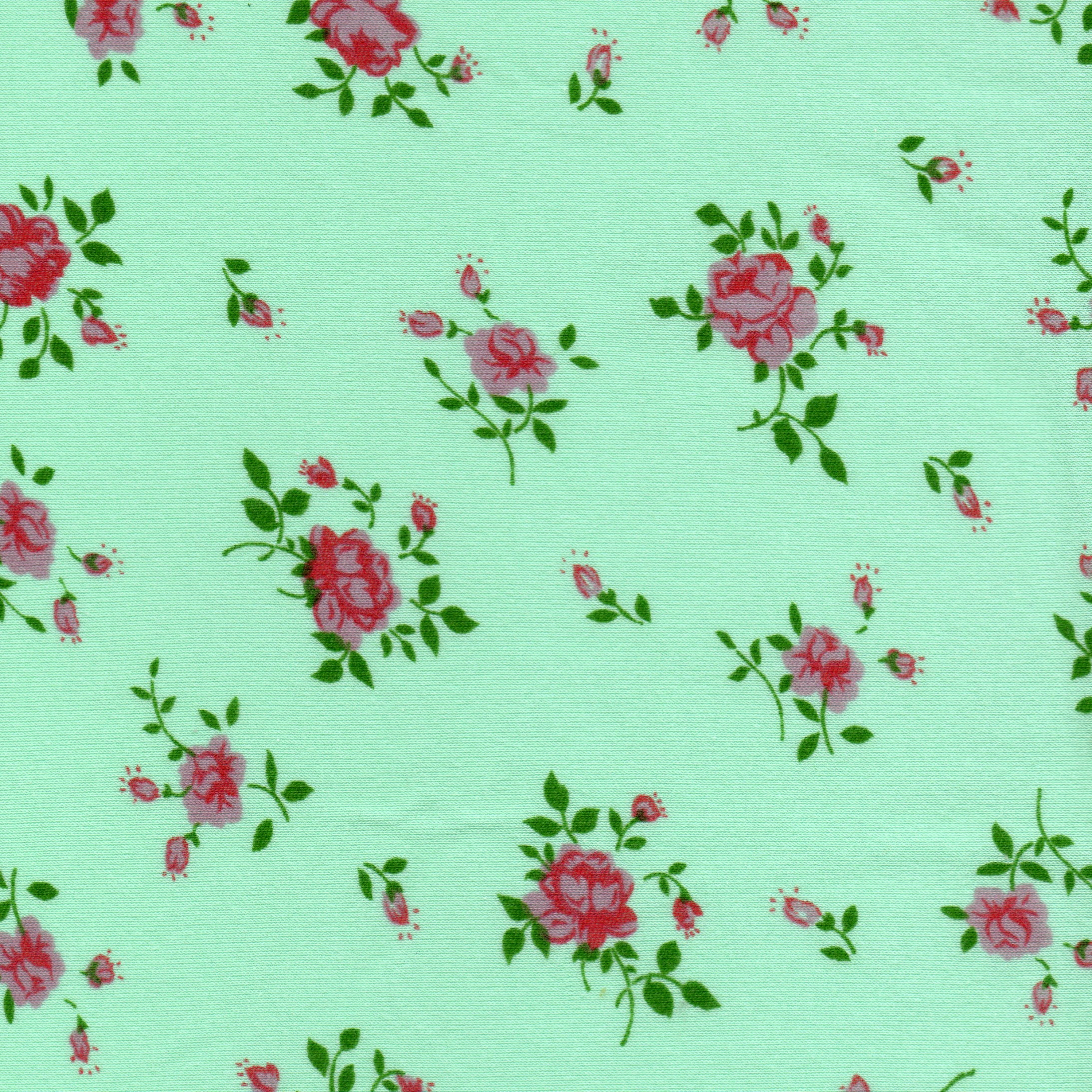 Coton fleuri vert